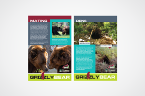 Saskatoon Zoo Interpretive Sign Bears