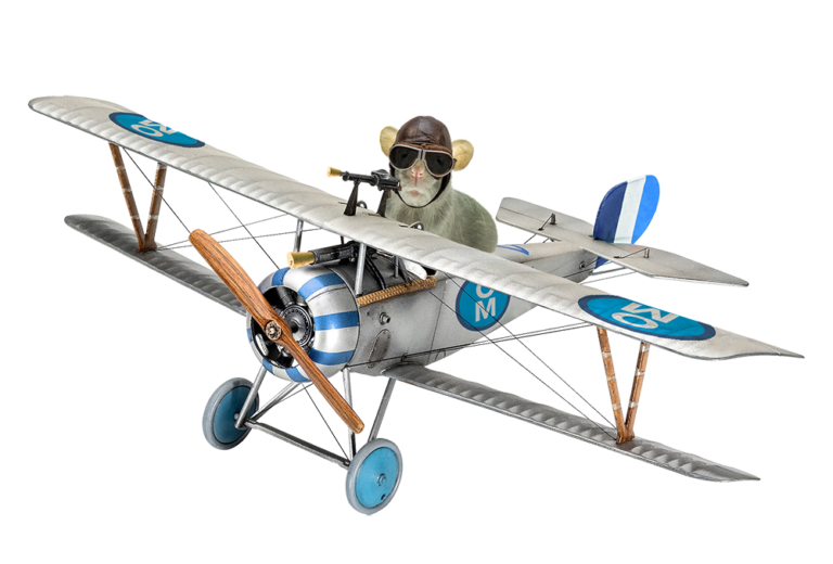 one-mouse plane